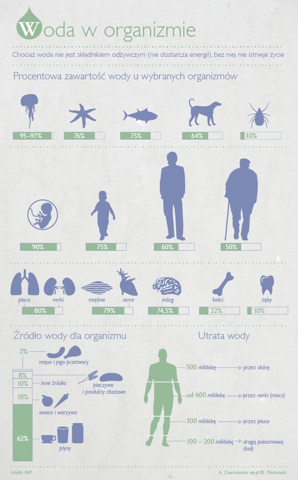 woda-w-org_infografika (1)